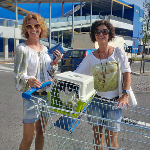 Amazing what you can get at Ikea these days! Laura and her friend bring us Dana's cat Nacho.