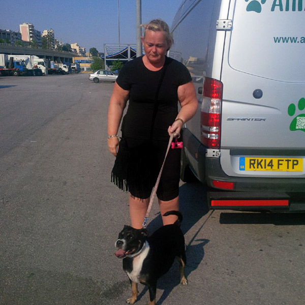 Happy little Beau is even happier now he has rejoined his owner Katie. We met her in Pireus port as the reunited pair are travelling on to the beautiful island of Rhodes.