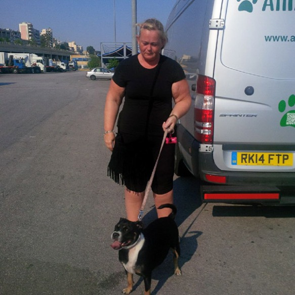 ‎Happy little Beau is even happier now he has rejoined his owner Katie. We met her in Pireus port as the reunited pair are travelling on to the beautiful island of Rhodes.