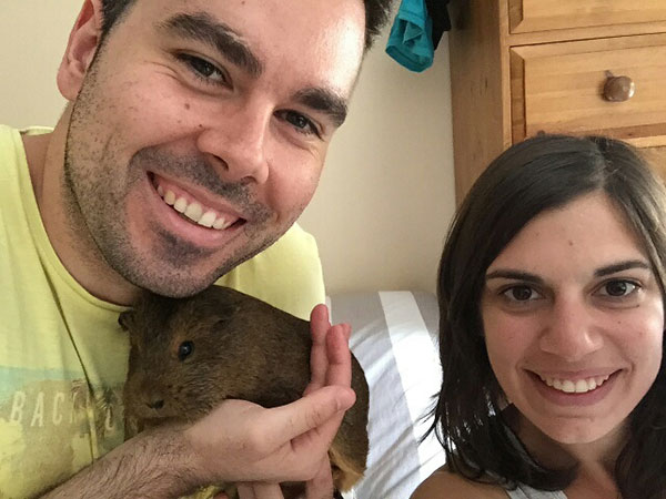Pedro and Leo are delighted that guinea pig Coby is home. Pedro texted to thank us for the caring service. We were chuffed at that, and have to say Coby was no trouble at all!