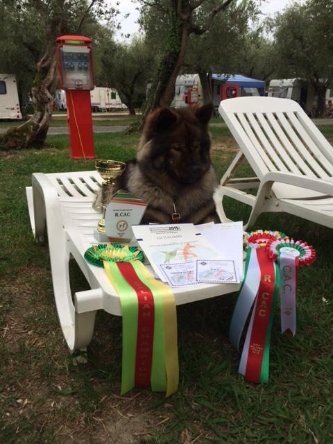 Xania's half-siblings Molly (an Italian champion)…
