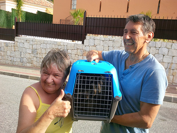Linda and Ray happily welcoming Dave, Lulu and Fifi to their new home
