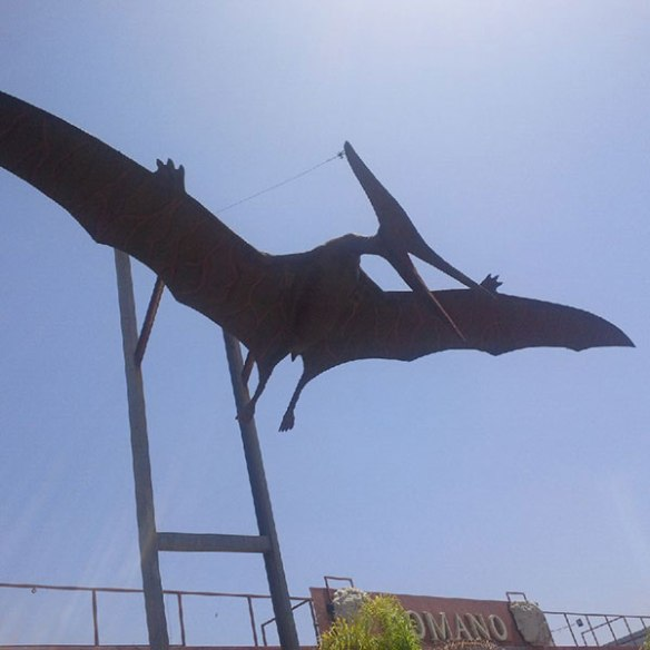 Pretty sure this one's a Pterodactyl