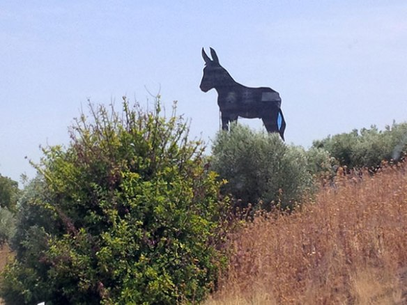 Fortunately, we didn't have to fit this donkey in…