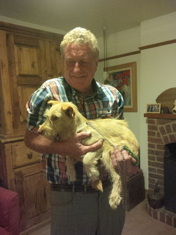 Late at night on his way home from golf, Jack called for young pup Toffee, adopted from Portugal. Jack had never met Toffee before, but was very taken with him, as you can see.