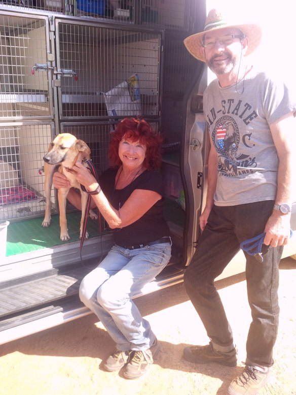 Heather and Alan with Rikki, who's had the good fortune to be adopted by Sandy in the UK