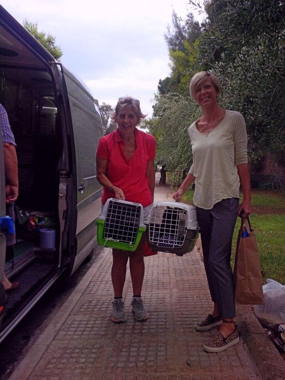 Cordelia (R) and friend bring us cats belonging to Paula and Linda
