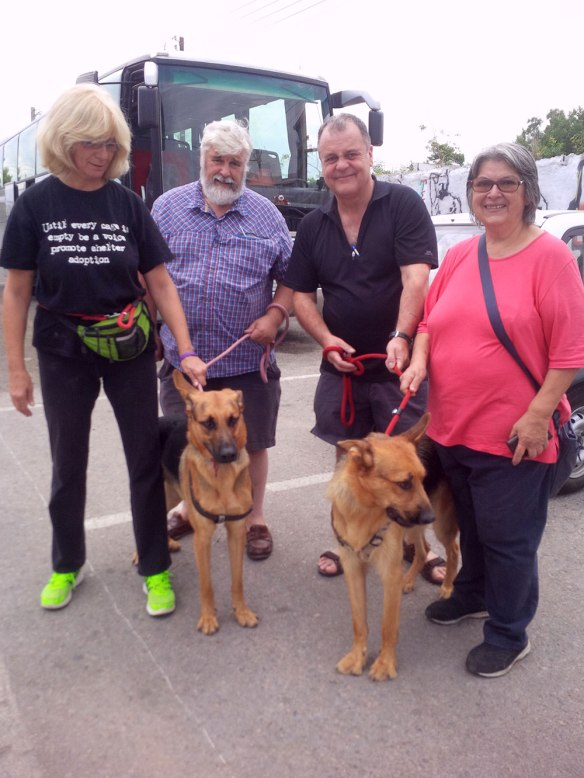 Martha, courier M, courier Mike and Kiki with Rex and Ringo