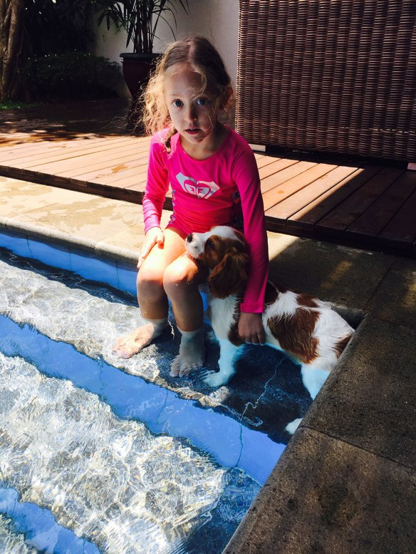 Tilly dipping her paws in the pool in Indonesia, with Tina from her human family