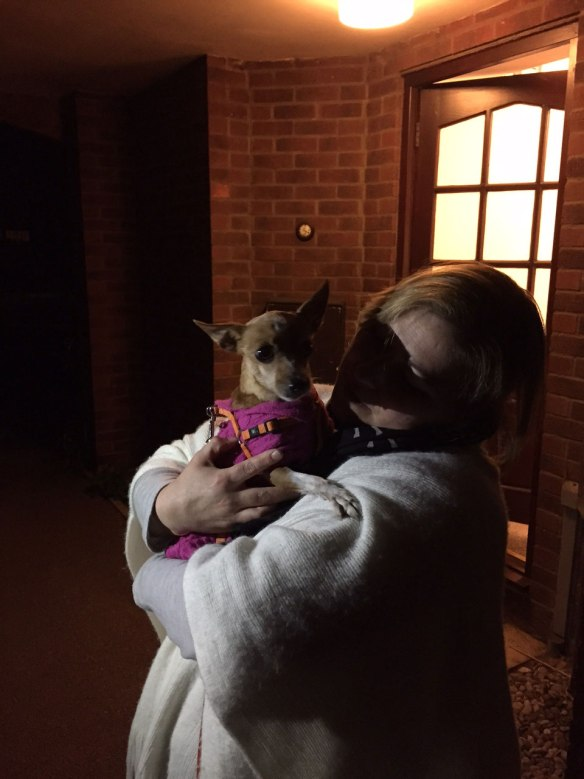 Pixtura back with her owner in Cambridgeshire — they'd been apart for several months so it was a very emotional reunion