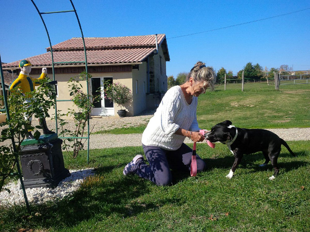 Poppy playing tug 'o war in the French sunshine