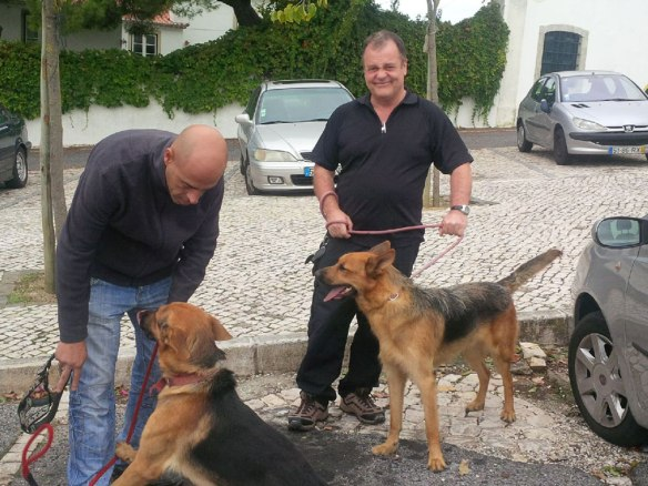 Rex and Ringo with Pedro (L) and courier Mike (R). Pedro hadn't seen his dogs for about six months so was very pleased that they recognised him.