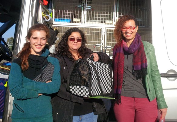 Sophia, Ellena and Sonia, volunteers from Nine Lives Greece, brought us Carrie and Olive, who belong to Carol