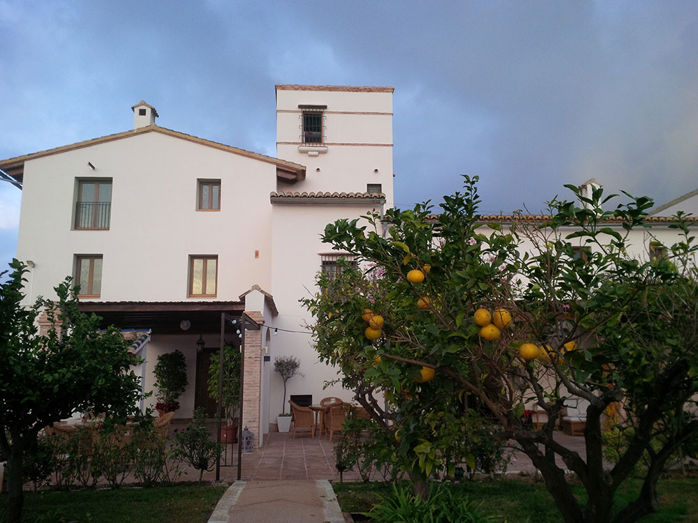 Our B&B outside Valencia — the citrus fruit season is in full swing in Spain